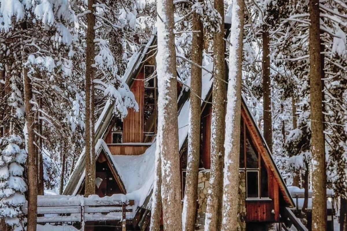 chalé suíço na floresta nevada