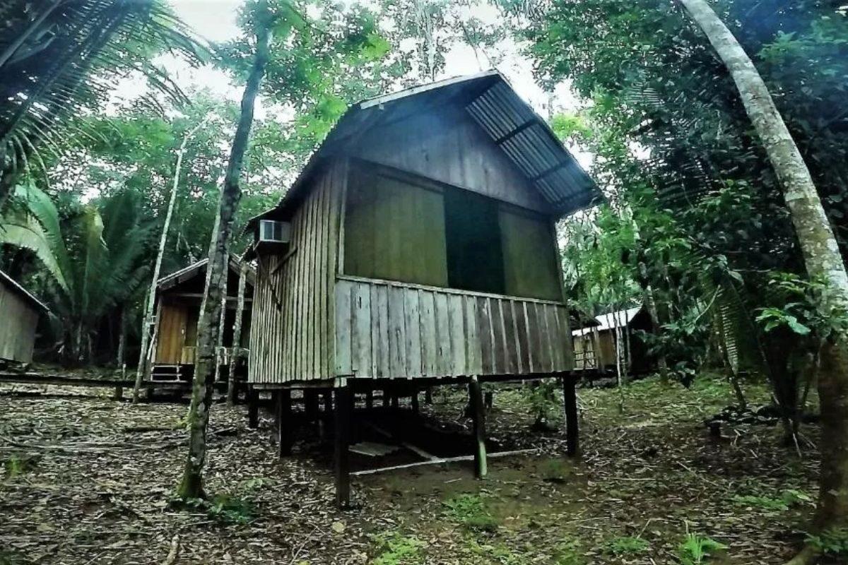 chales no brasil - amazonas -amazon juma eco adventure