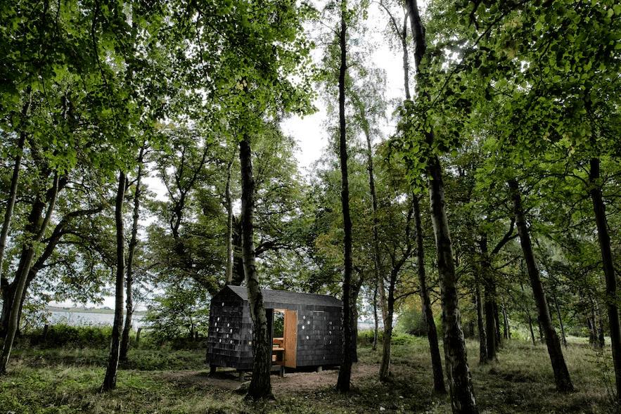 foto de chalé/abrigo em madeira na dinamarca no meio da floresta