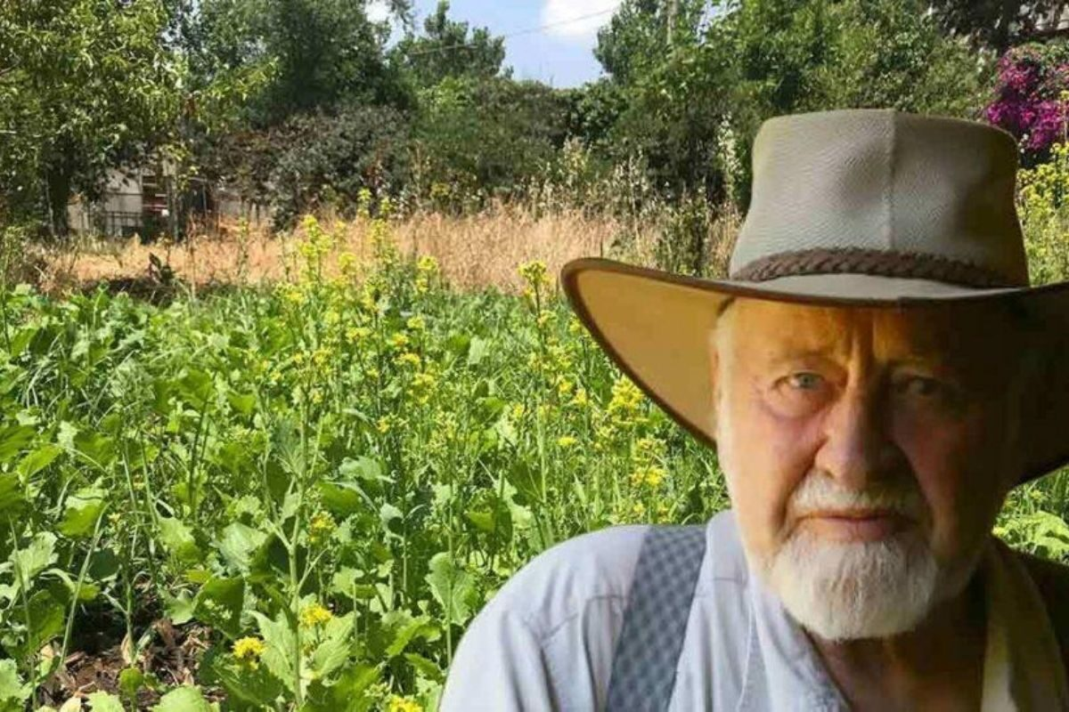 permacultura bill mollison