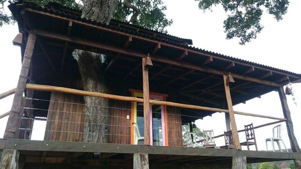 casa na árvore no Brasil 12