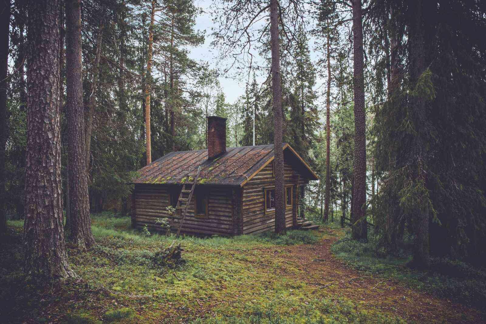 foto de cabana rústica feita de toras em meio a uma floresta finlandesa