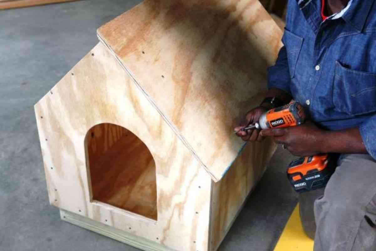 como construir uma casa de cachorro de madeira