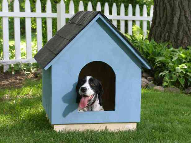 casa de cachorro de madeira passo 7