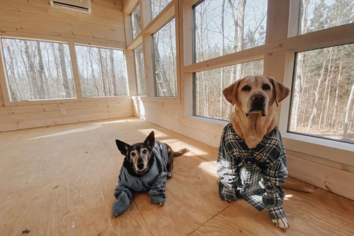 como construir uma cabana de madeira 5