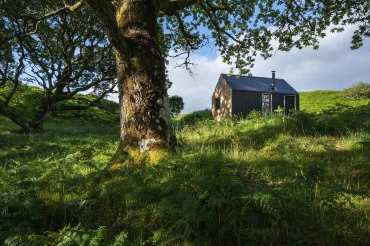 tiny house cercada pela natureza 4