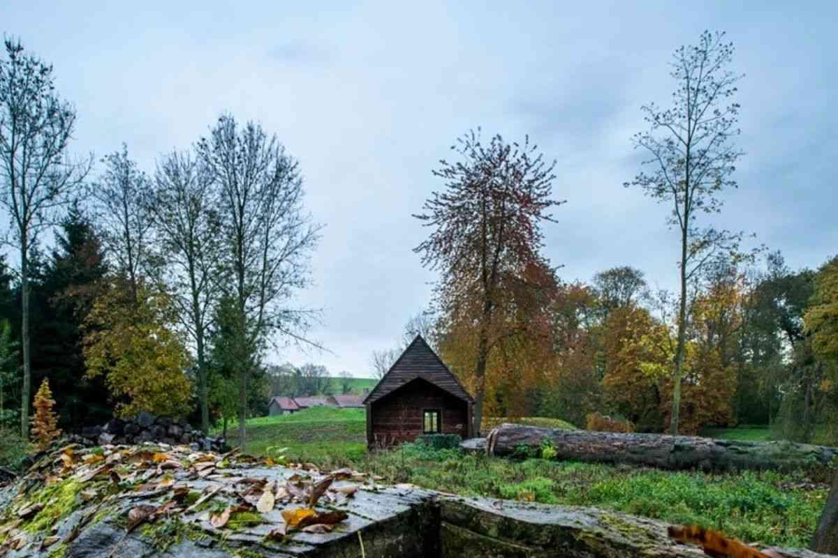 cabana de madeira oleo queimado de rosse foto 8