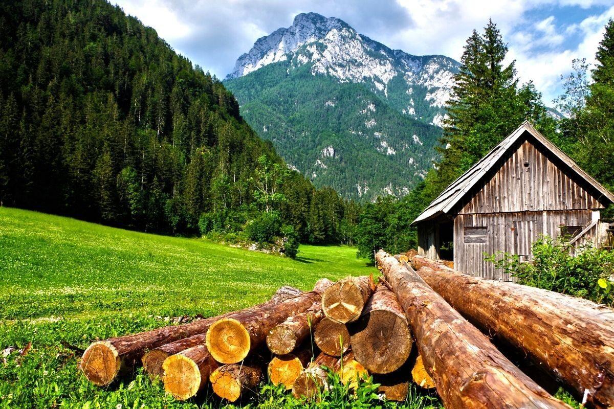 casa de madeira antiga cabanas de madeira
