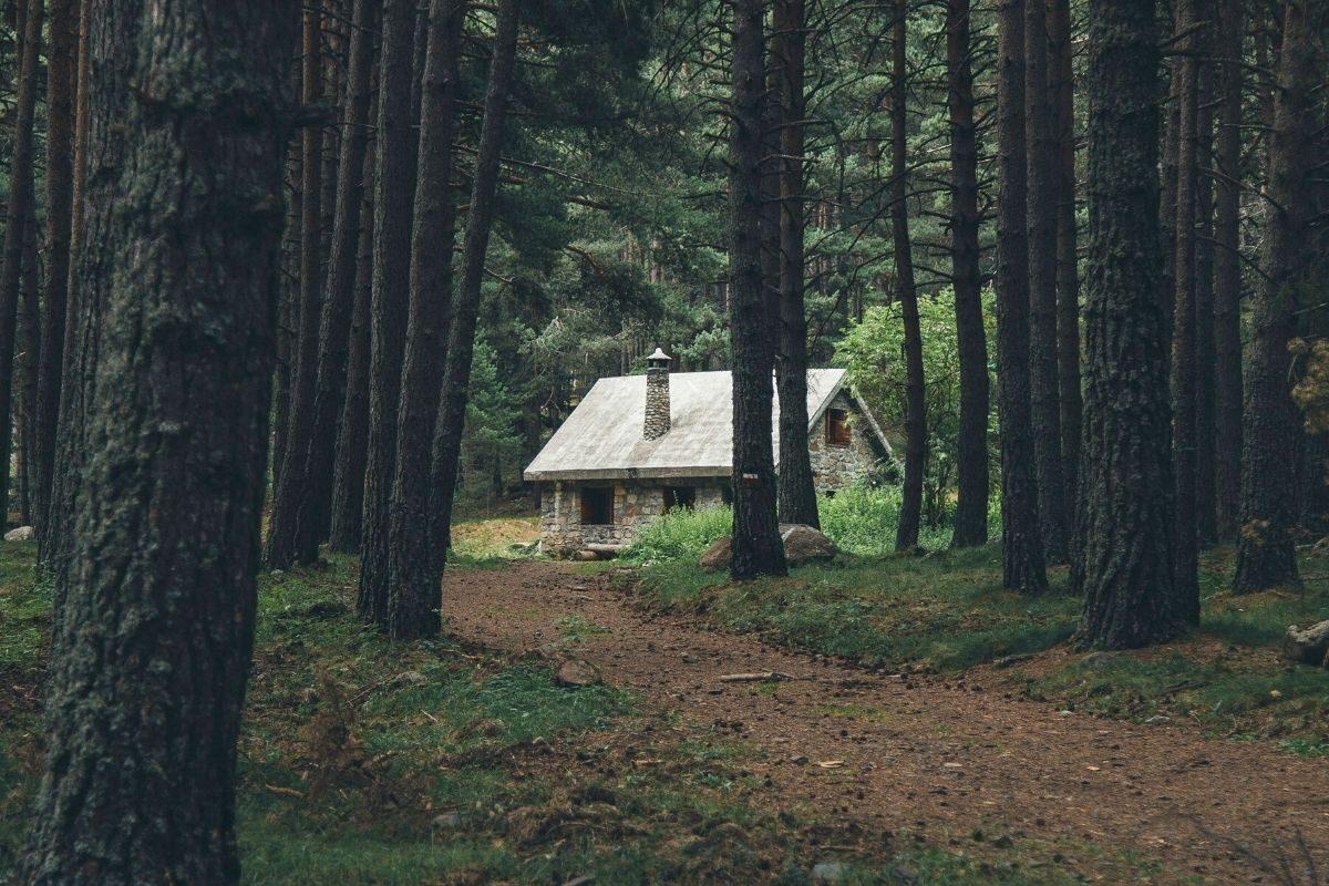 casa de madeira rústica em meio as arvores