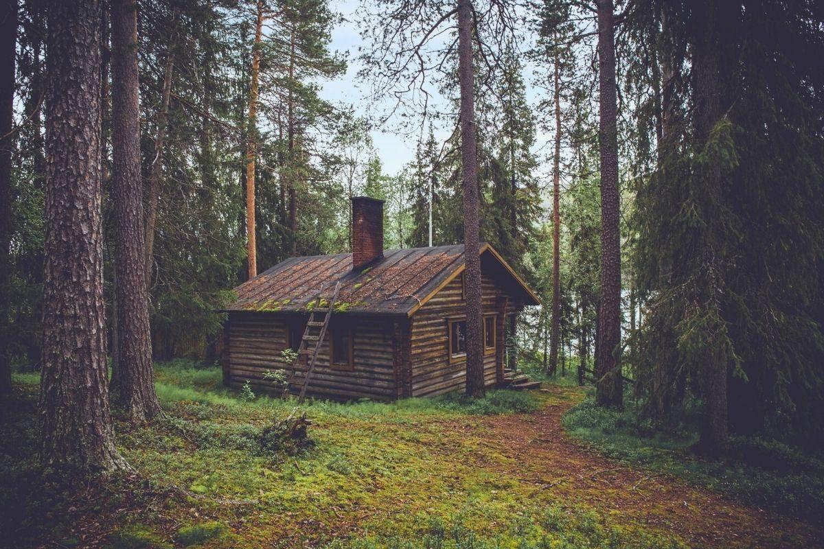 casa de madeira rústica na floresta
