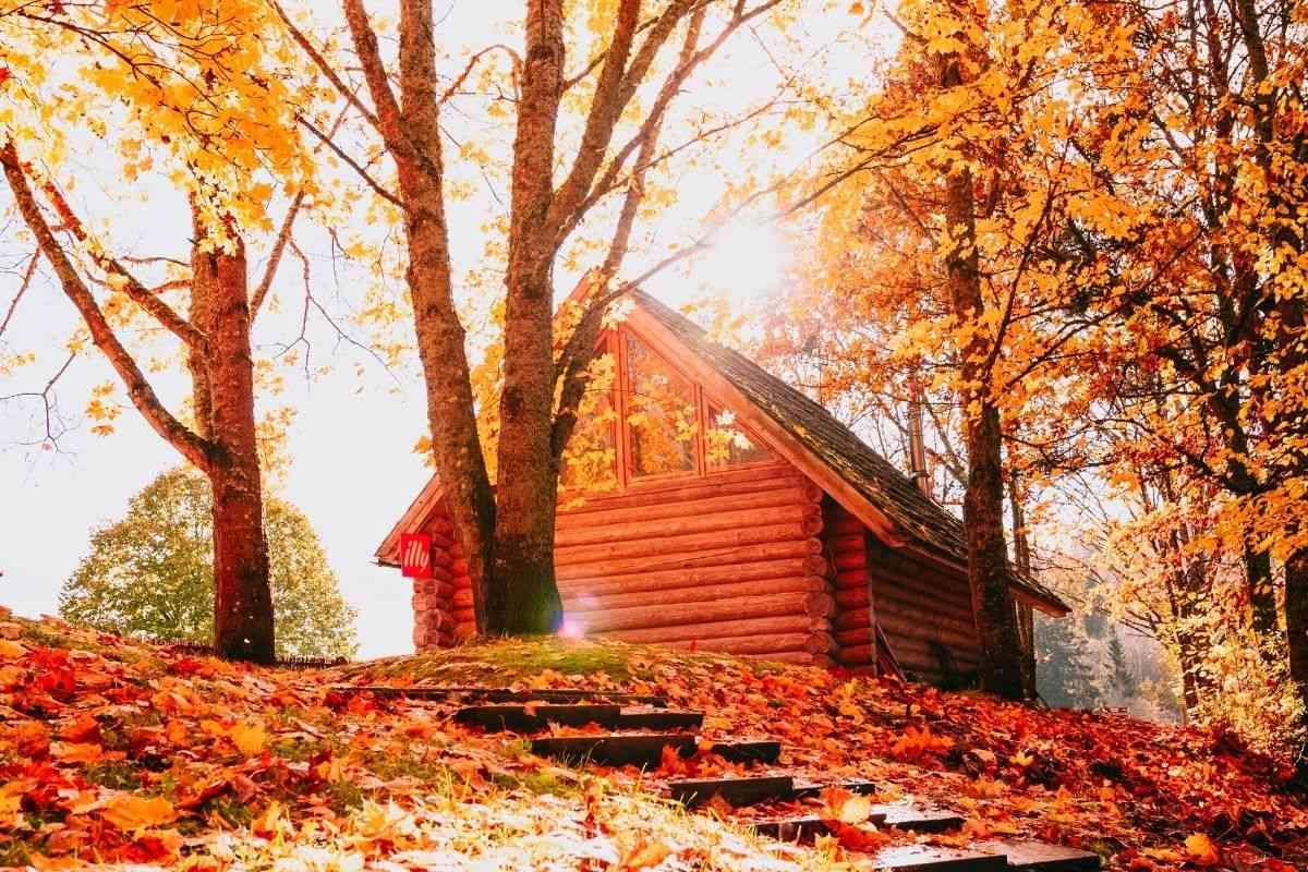 casa de madeira rústica