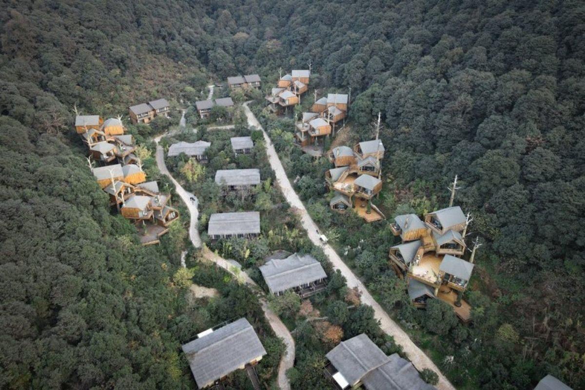 vila de casas na arvore de madeira WH Studio foto 1