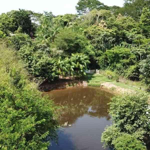 bangalôs no acre