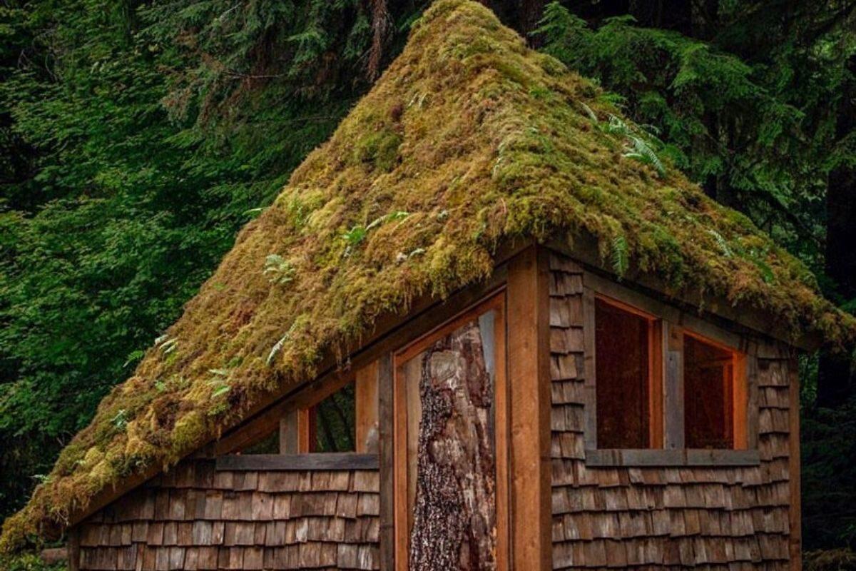 chalé de madeira diamante cabinland foto 6