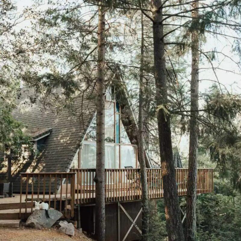 chalés de madeira e vidro foto 1