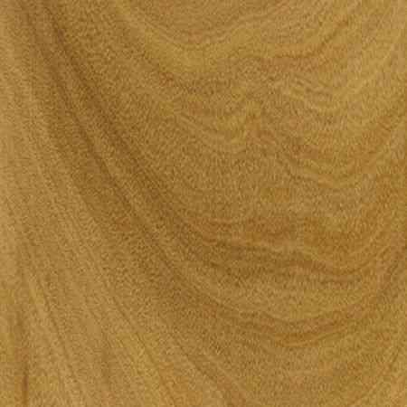 perobinha zoom tangencial