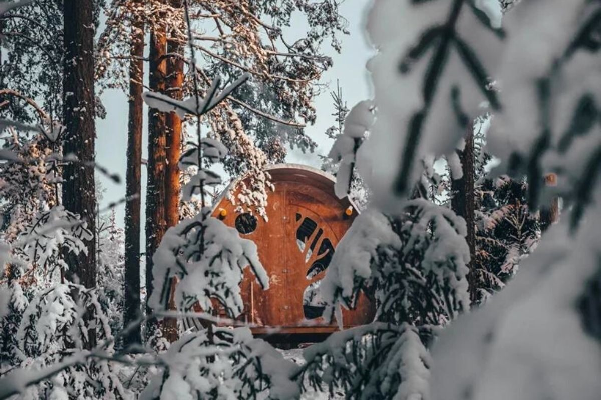 cabana de madeira e alumínio fuselagem avião foto 9