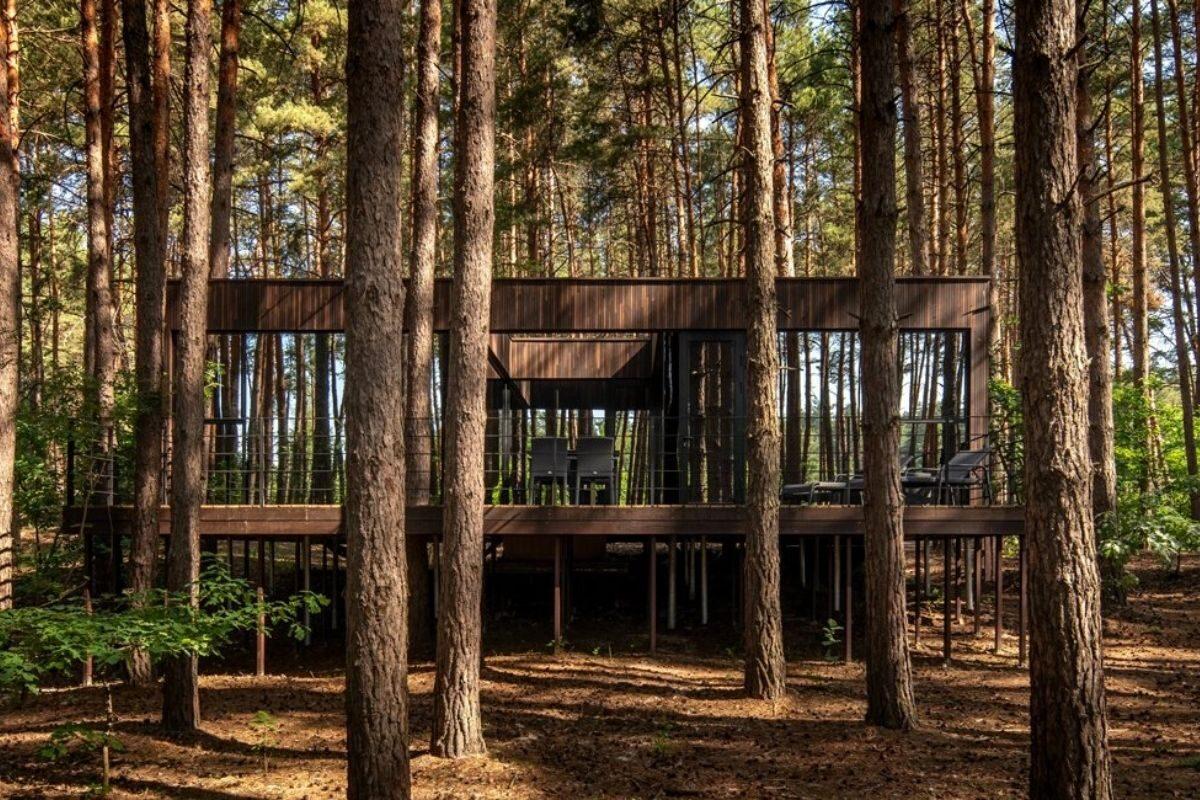 casa de madeira na floresta foto 1