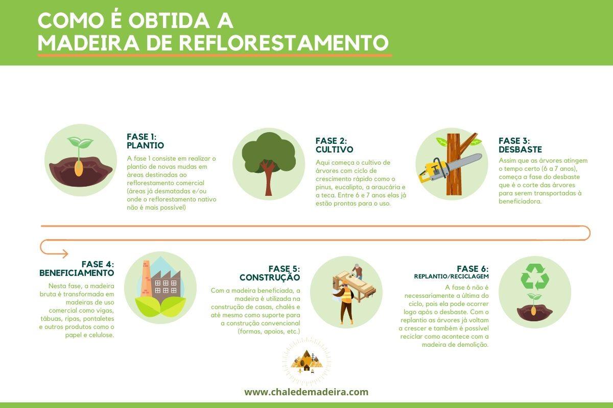 infográfico madeira de reflorestamento