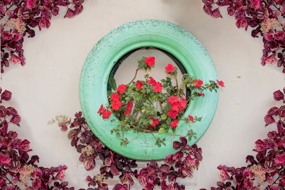 jardim de pneus usados