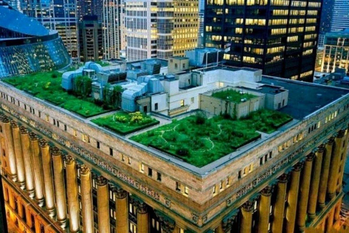 telhado verde da prefeitura de chicago