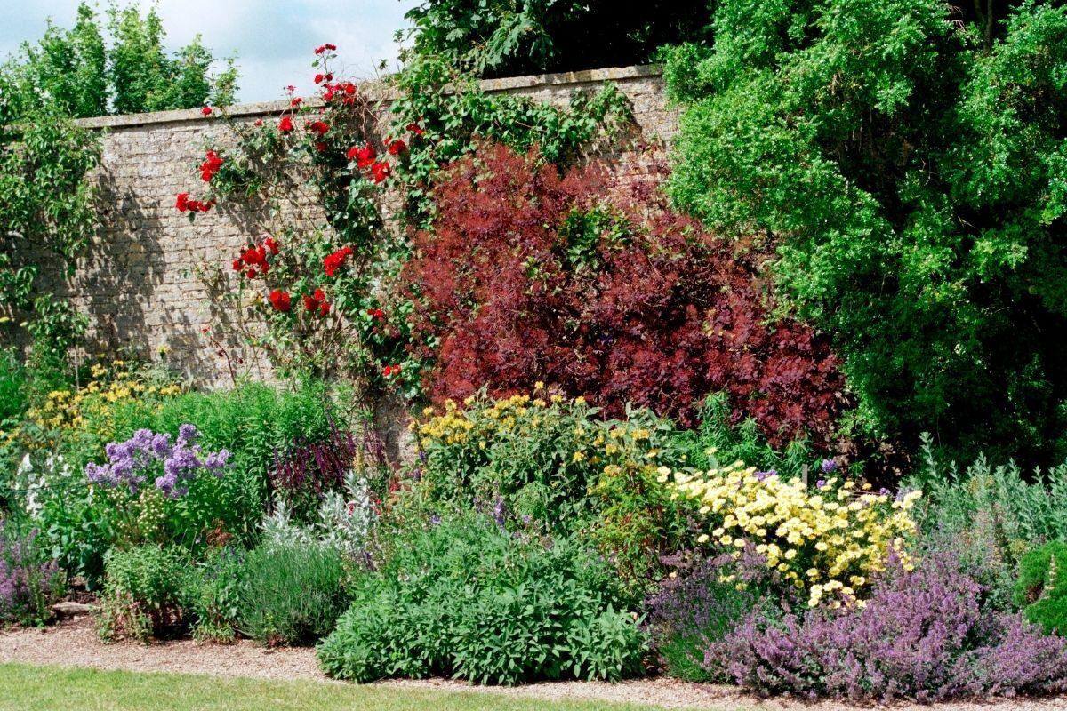 Jardim de muro pequeno
