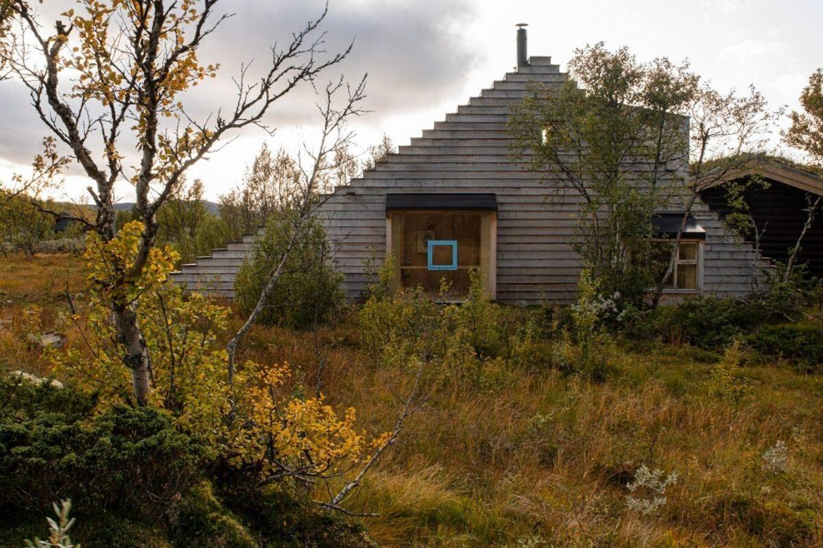 casa de madeira com telhado multifuncional foto 2