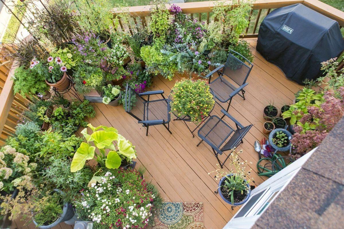 jardim pequeno ideia 16