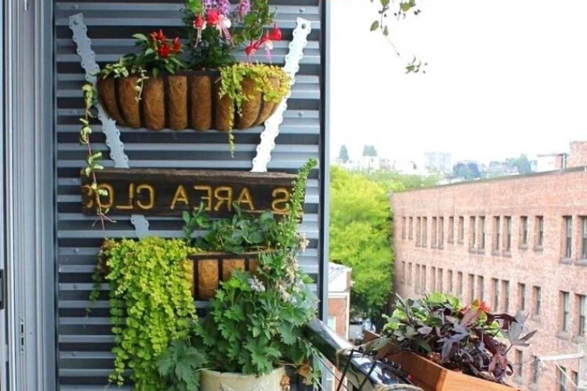 jardim pequeno ideia 31