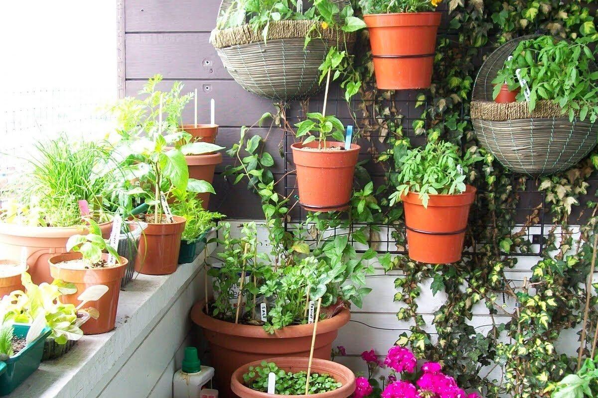 jardim pequeno ideia 35