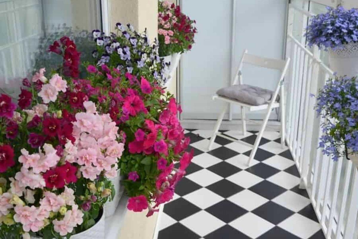 jardim pequeno ideia 7