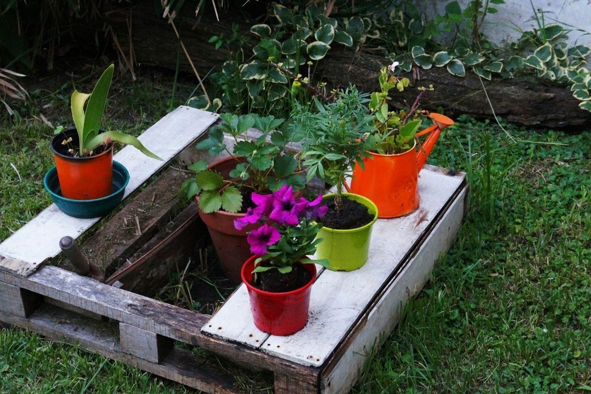 jardim pequeno ideia 78