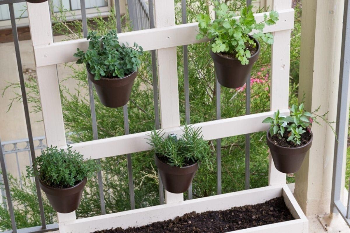 jardim pequeno ideia 8