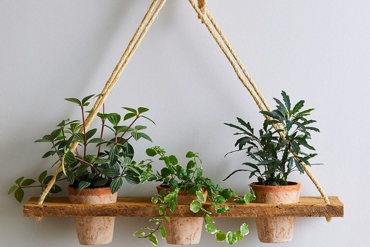 Como fazer um suporte de madeira para as plantas no formato suspenso passo-a-passo