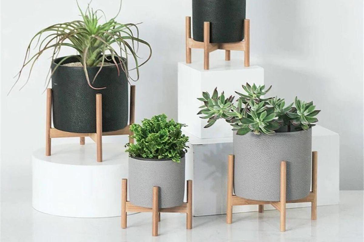 Suporte de madeira para as plantas de chão