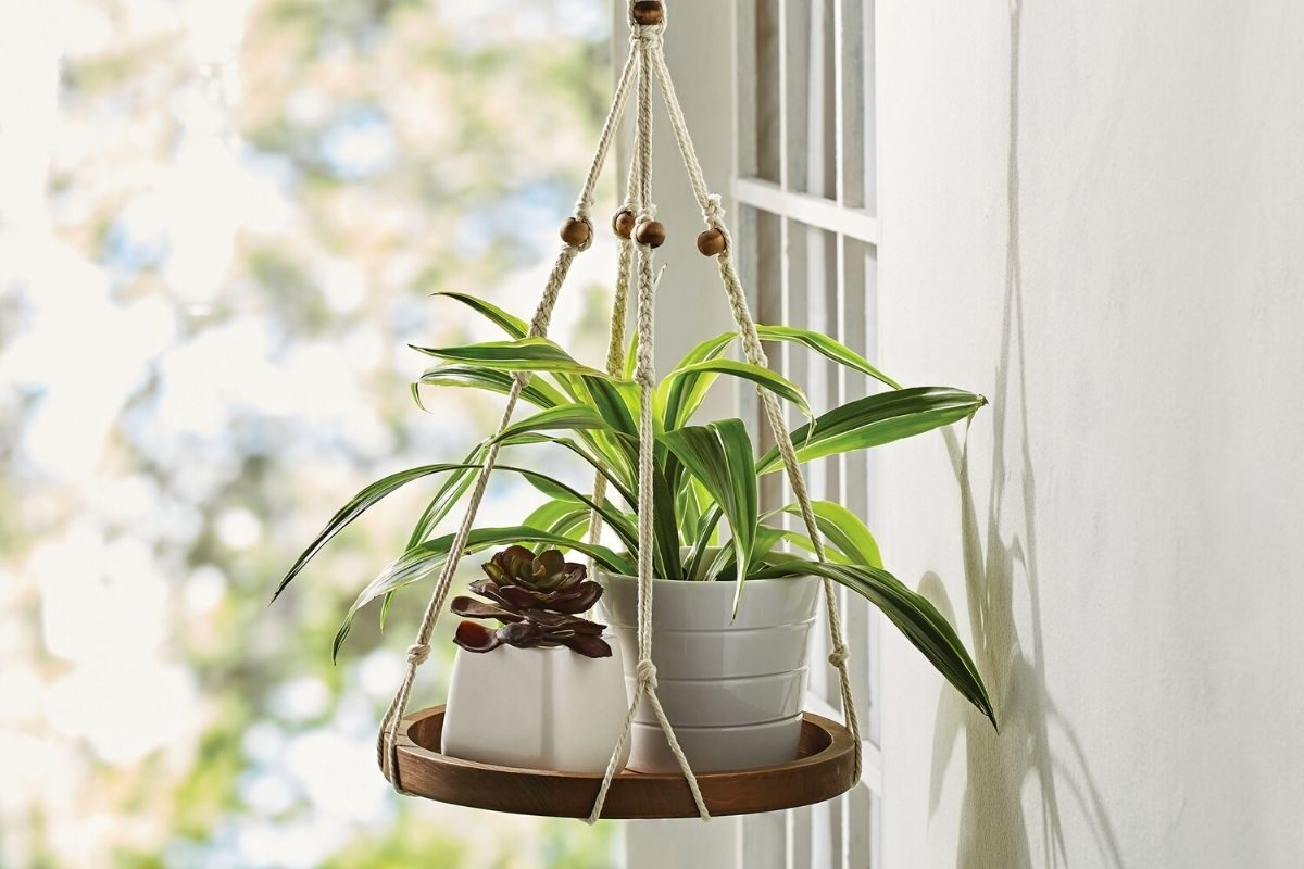 Suporte de madeira para as plantas no formato suspenso
