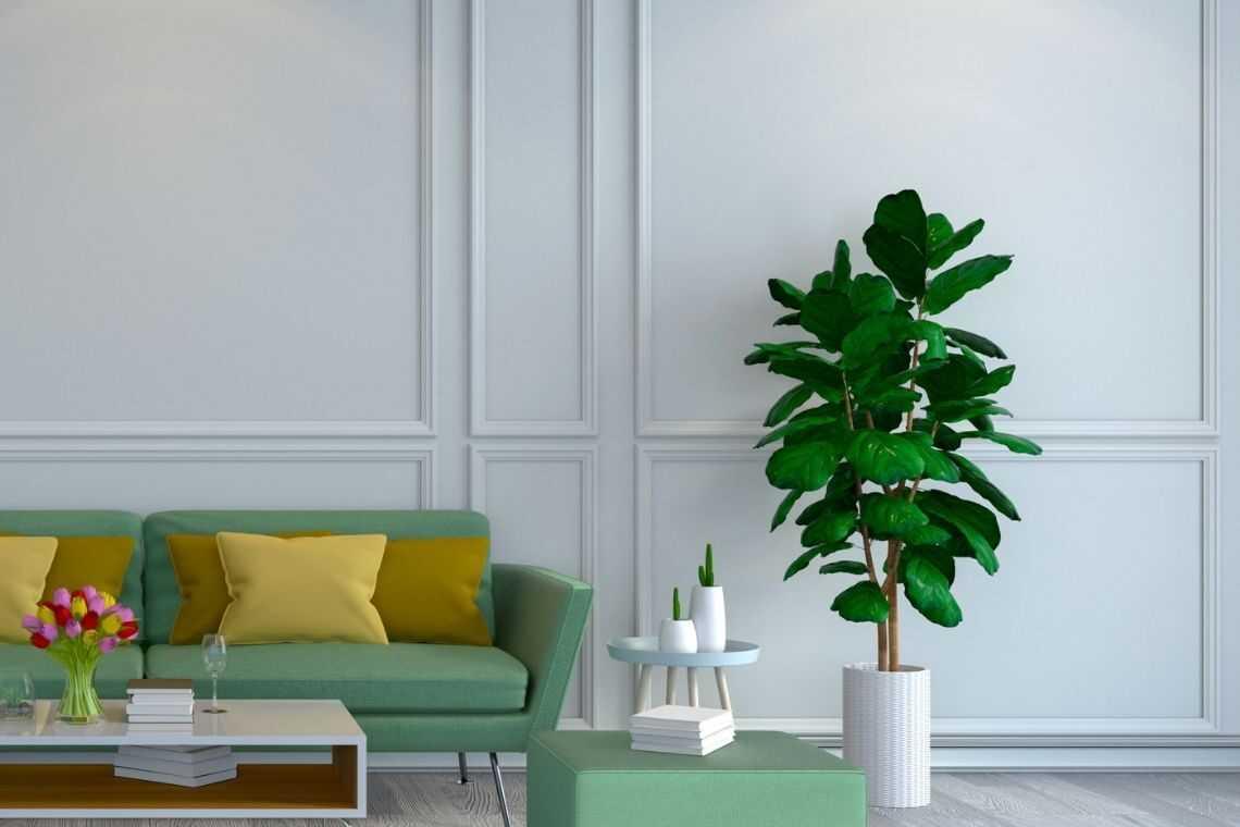 Pinte as paredes de branco