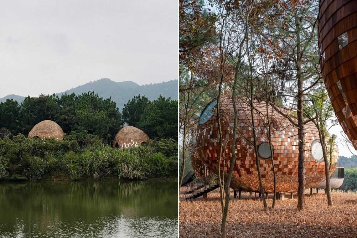 cabana de madeira semente foto 19