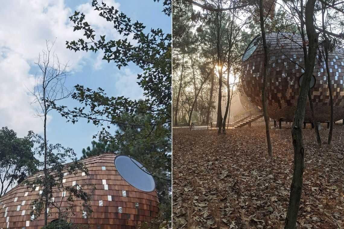 cabana de madeira semente foto 20