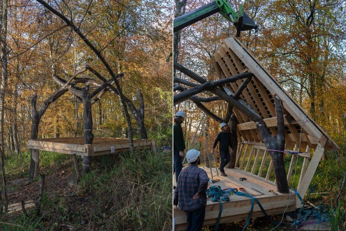 cabana robos Woodland Cabin foto 5