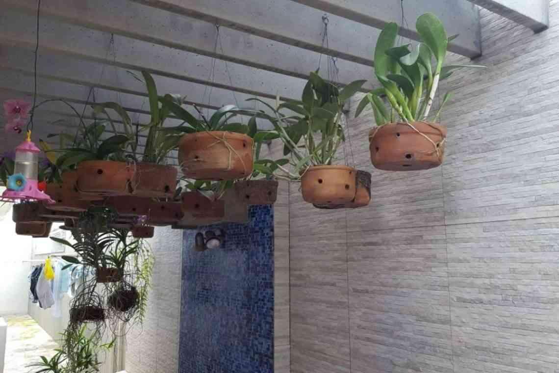 Pergolado com flores e plantas